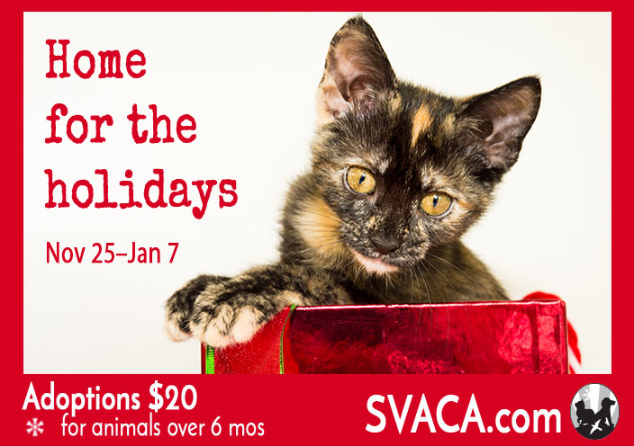 SVACA eBillboard - Home for the Holidays correct date