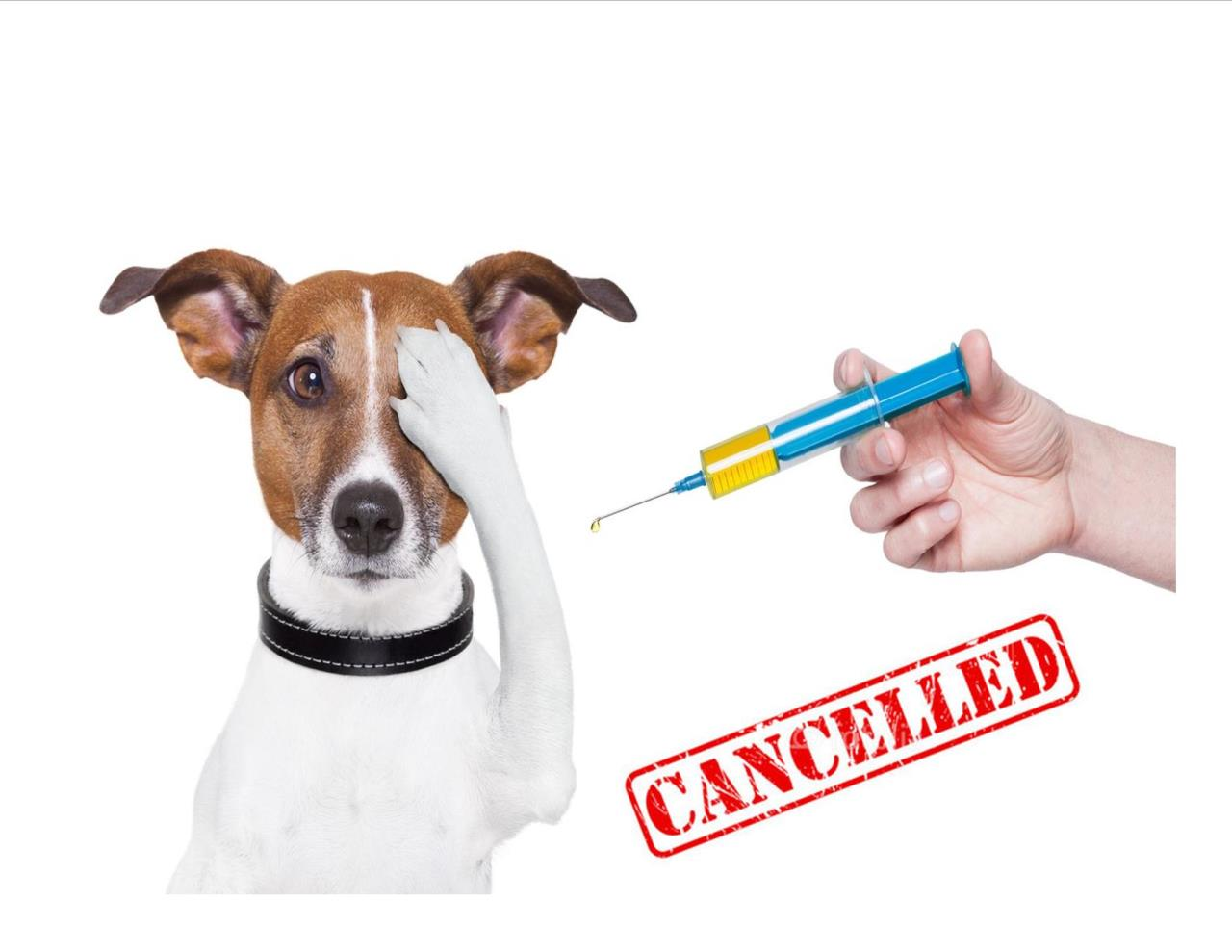 Vaccine clinic cancelled