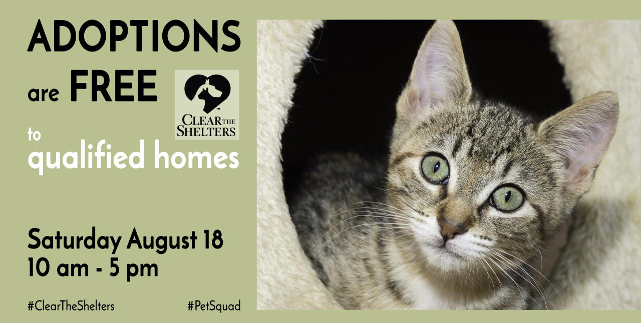 SVACA Web Banner - Clear the Shelters 2018 (2)