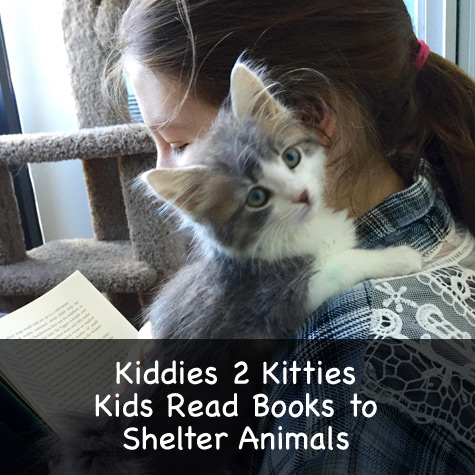 Kiddies 2 Kitties. Kids read books to shelter animals.
