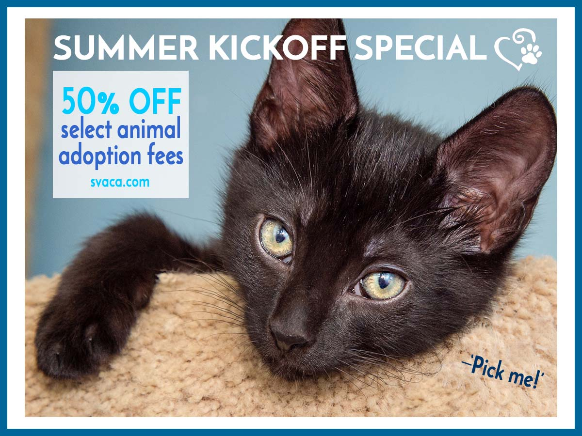 Summer Kickoff Adoption Special!